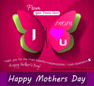 Mother Day Pink Butter fly Cover