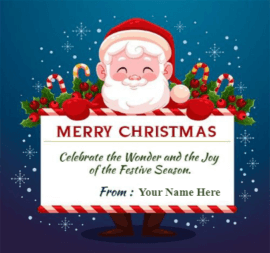 Merry  Christmas Santa wishes