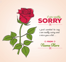 Really Sorry Message